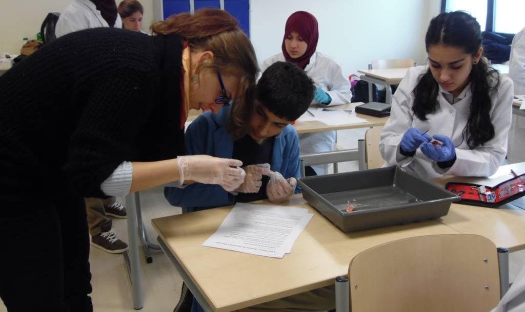 Cours de laboratoire